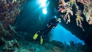 Дайвинг-сафари на Красное море